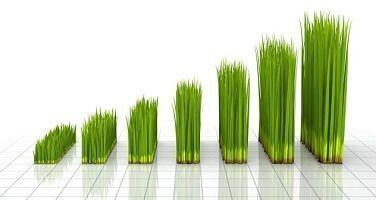 seo inmobiliario web inmobiliaria crecimiento -